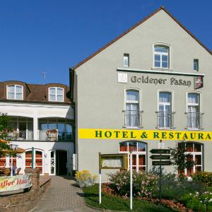 Hotelbilleder: Hotel Goldener Fasan, Oranienbaum-Wörlitz