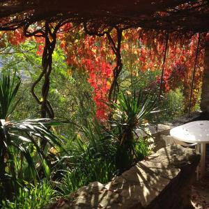 Фотографии отеля: Cal Xeco, Montsonis