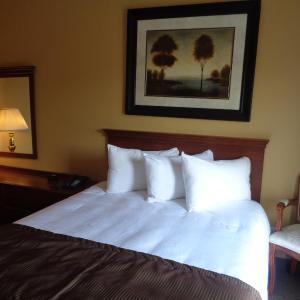 Hotel Pictures: Motel Cofotel, Saint-Siméon