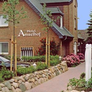 Hotelbilleder: Hotel Amselhof, Westerland