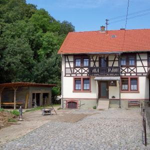 Hotel Pictures: Pferdehof und Wanderreitstation Dorsam, Mörlenbach