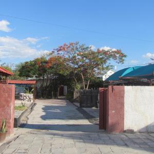 Hotel Pictures: Dolar Lodges & Tours, Maun