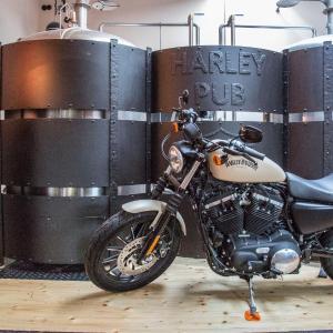 Hotel Pictures: Penzion Harley Pub, Otrokovice