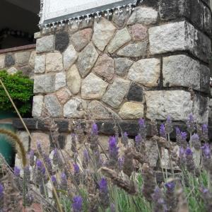 Φωτογραφίες: Posada Del Angel, Villa Serranita