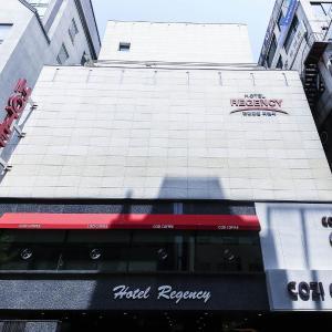 酒店图片: Bundang Regency Hotel, 城南市