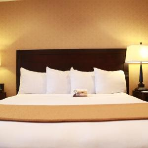 Hotelbilleder: Quality Inn & Suites Seattle Center, Seattle