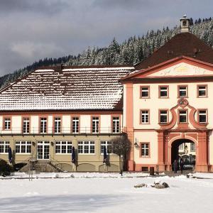 Hotel Pictures: Hotel Klosterhof, St. Blasien
