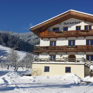 Φωτογραφίες: Apartment Zillertal, Kaltenbach