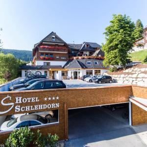 Hotelbilleder: Hotel Schlehdorn, Feldberg in Mecklenburg