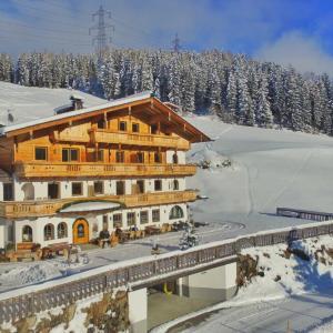 Photos de l'hôtel: Alpenkönig, Zell am Ziller