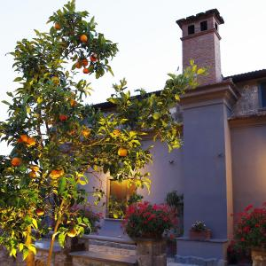 Hotel Pictures: Podere Don Peppe 1884, Massa Lubrense