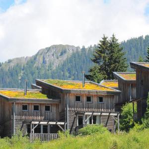 Фотографии отеля: Feriendorf Hohentauern by Alps Residence, Hohentauern