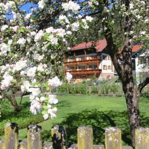 Фотографии отеля: Gästehaus Struggl, Штайндорф-ам-Оссиахер-Зее