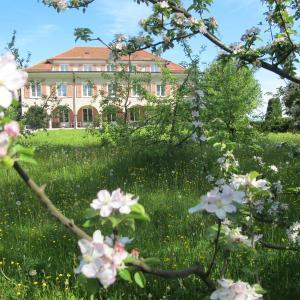 Hotel Pictures: Burgbühl, Sankt Antoni