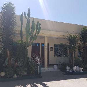 Hotel Pictures: 7E Guest House, Debre Zeyit