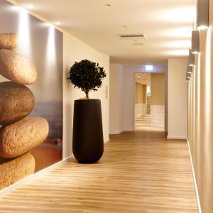 Hotel Pictures: relexa Hotel Harz Wald, Braunlage
