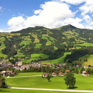 Fotos do Hotel: Gorilla, Hopfgarten im Brixental