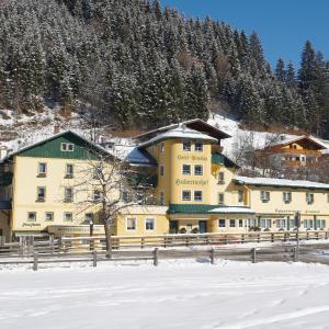 Hotel Pictures: Hotel Hubertushof, Hüttau