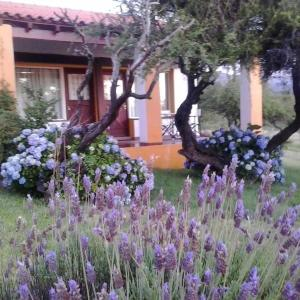 Hotellbilder: Hostería Las Lomas, Cortaderas