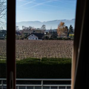 Hotel Pictures: Motel Le Léman, Commugny