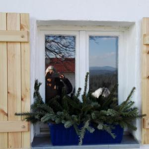 Hotelbilleder: Ferienhaus Winter, Blaibach