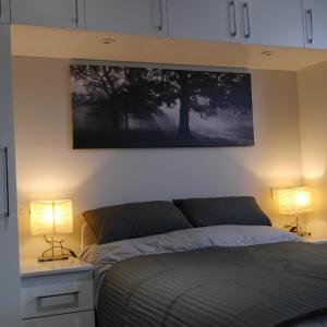 Hotel Pictures: Chertsey Apartment, Chertsey