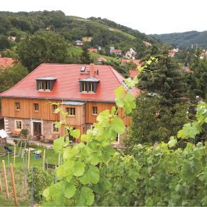 Hotel Pictures: Weingut Mariaberg, Meißen