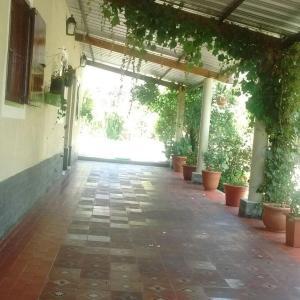 Hotellbilder: 5 soles, El Mollar