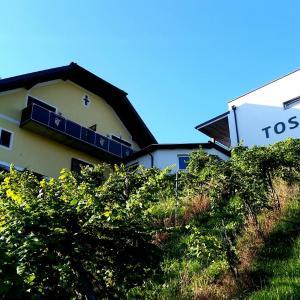 酒店图片: Weingut Winzerzimmer Toso, 里欧查赫