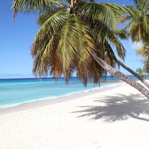 Hotelbilleder: Beach Guest House Cleverdale, Bridgetown