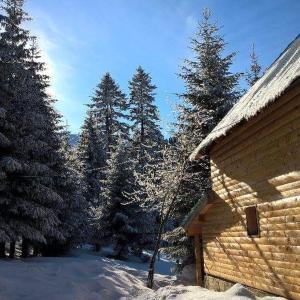 Foto Hotel: Vikendica Teodora, Jahorina
