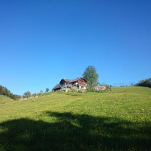 Hotellbilder: BIO-Bauernhof Kurzeck, Göstling an der Ybbs