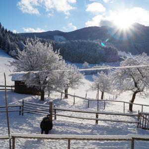 Hotellbilder: Urlaub am Bauernhof Grub, Göstling an der Ybbs