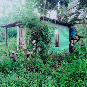 Hotel Pictures: Toucans Tiny home, Agujas