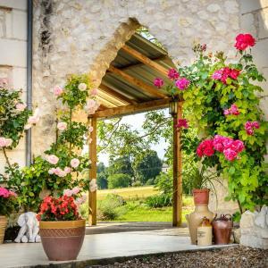 Hotel Pictures: Les Arches de Muschamp, Cussay