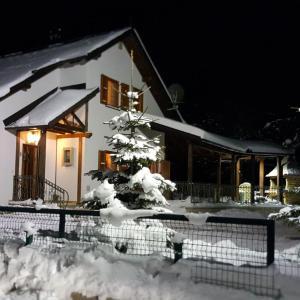 Hotellikuvia: Chalet Tara, Risovac