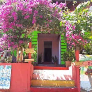 Hotel Pictures: Hostel Pura Vida, Montezuma