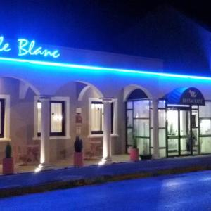 Hotel Pictures: Logis Hotel Le Merle Blanc, Digoin