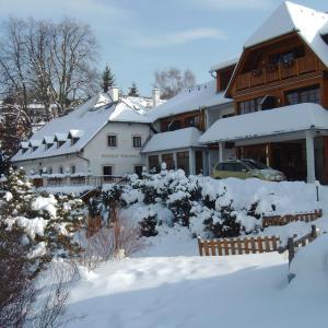 Hotellikuvia: Hotel zum Steinhauser, Sankt Kathrein am Offenegg