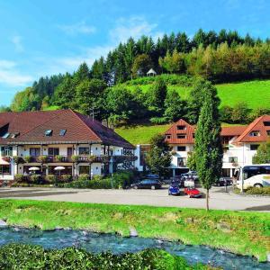 Hotel Pictures: Hotel 3 Könige, Oberwolfach