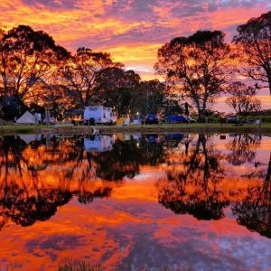 Fotos do Hotel: Coonawarra Bush Holiday Park, Coonawarra