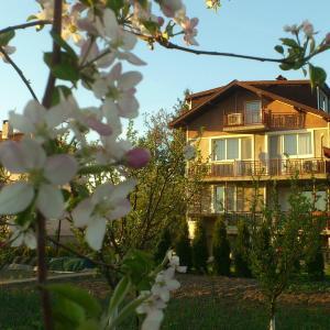 Hotel Pictures: Villa Reveri, Tsŭrkva