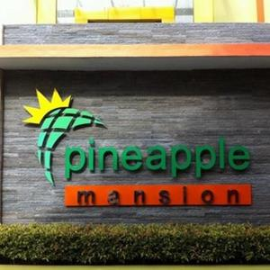 Hotelfoto's: Pineapple Mansion, Solo