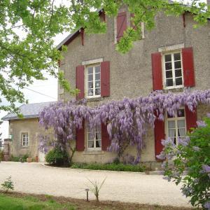Hotel Pictures: Les Vieilles Vignes, Thorigné