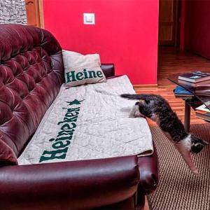 Фотографии отеля: Rooms.SPb, Санкт-Петербург