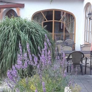 Фотографии отеля: Hotel Garni Hügellandhof, Neuhaus am Klausenbach