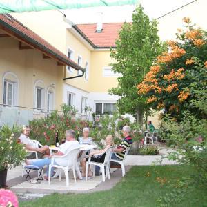 Фотографии отеля: Pension & Weingut Storchenblick, Ильмиц
