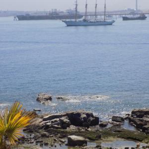 Фотографии отеля: Cabañas Punta Caleuche, Quintero