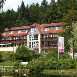 Hotelbilleder: Parkhotel Bad Brambach, Bad Brambach
