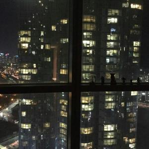 Fotografie hotelů: Luxury&Beautiful Marine City Apt, Busan